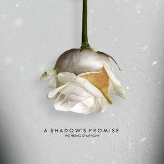 A Shadow's Promise
