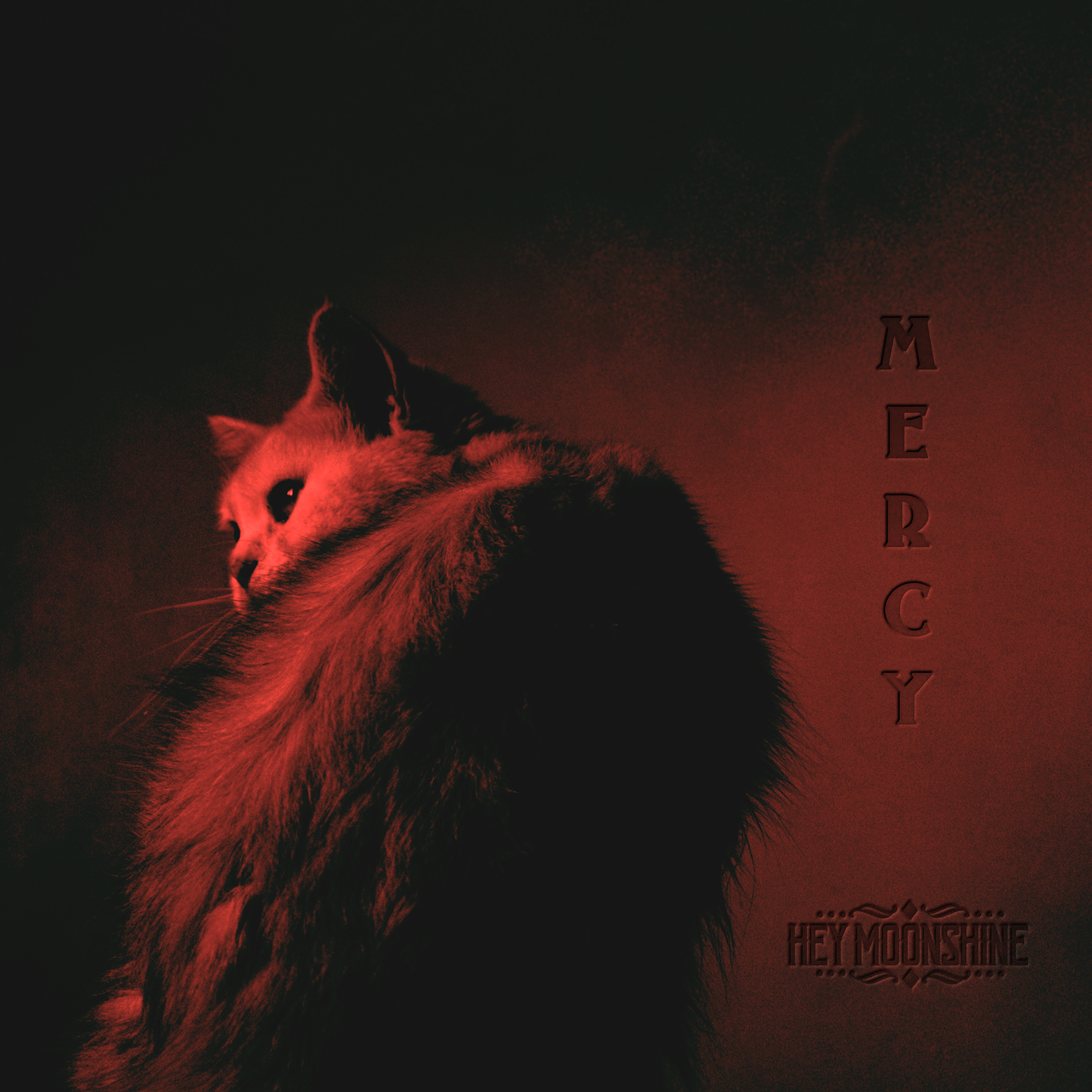 Hey Moonshine Releases Mercy  to Battle Depression